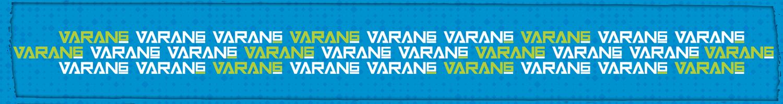 KEEPERsport Varan6 Invincible goalkeeper gloves