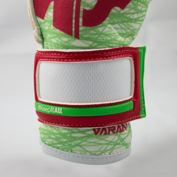 Varan6 Pro